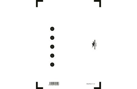 Wymienna tarcza - Biathlon / 5m